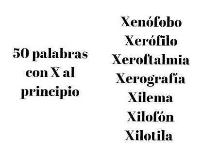 Wörter mit x am anfang