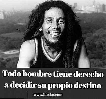 Bob Marleys 100 Beste Phrasen Liebe Frieden Leben