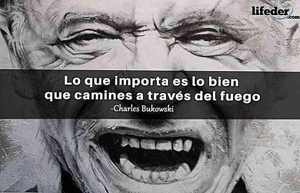 Le 100 Migliori Frasi Di Charles Bukowski Thpanorama