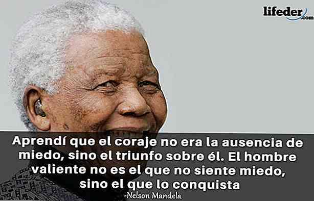 Le 100 Migliori Frasi Di Nelson Mandela Thpanorama
