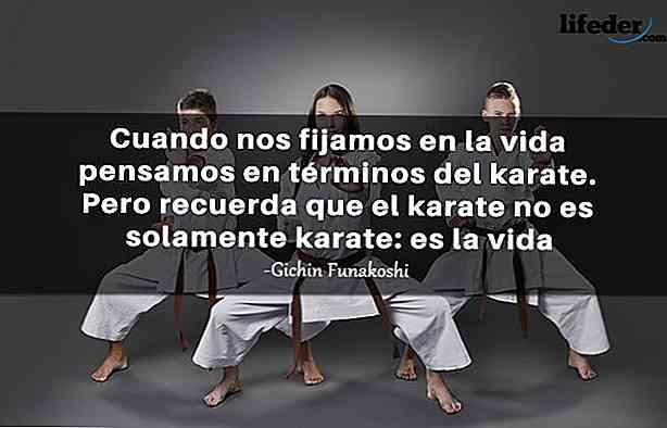 Frasi Celebri Karate Kid.Le 50 Migliori Frasi Sul Karate Thpanorama Diventa Meglio Oggi