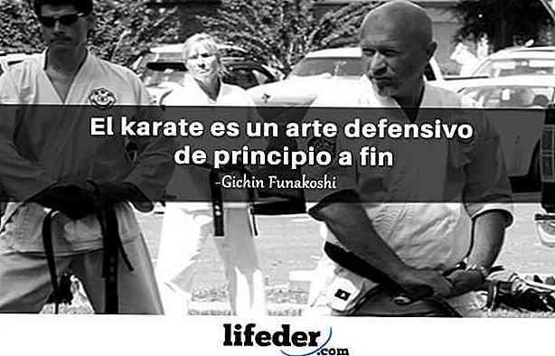 As 50 Melhores Frases Sobre O Karate Thpanorama Torne Se