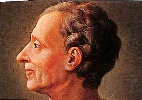 Biografia de Montesquieu, Contribuições e Obras | Thpanorama ...