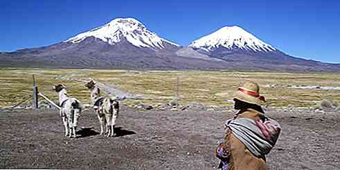 Zona Norte do Chile Clima, Flora, Fauna e Recursos